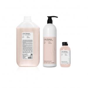colour shampoo backbar